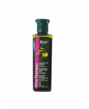 Olive Shampoo for Dry & Damaged Hair
